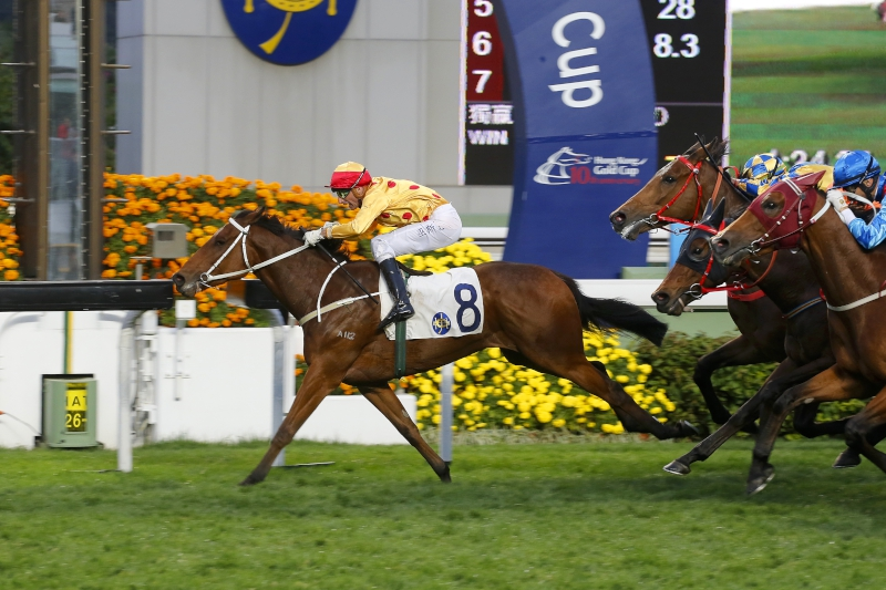 Gold Mount lands a Class 2 handicap in style on his Hong Kong debut last month.