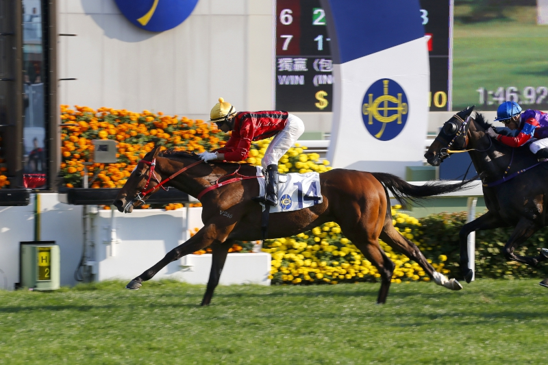 Dinozzo coasts to victory over 1800m two starts back.