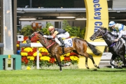 Premiere completes a hat-trick of wins over 1000m at Happy Valley two starts back.