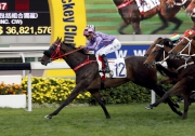 What Else But You completes a hat-trick of wins this season over 1600m at Sha Tin last start.