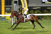 D B Pin lands a cozy win over 1000m at Happy Valley last start.