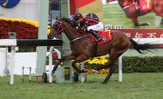 Thewizardofoz lands the Chinese New Year Cup in style last season.