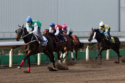 「巴基之星」(綠白綵衣) 在今早沙田的1200米泥地試閘中以首名衝線。