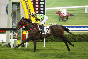 Nothingilikemore remains unbeaten after his latest impressive victory over 1400m at Sha Tin.