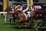 Golden Sleep (red cap) bursts through to hold off Magical Beauty in a tight photo finish.