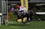 Contribution��s win in the Incheon Handicap provided owner Hui Sai Fun with a 98th individual winner.