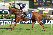 The United States contested the Queen Elizabeth Stakes at Randwick last start.