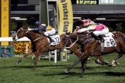 Sea Jade (No. 12) and Blocker Dee dead heat for the win in the Class 1 Happy Valley Trophy (1200m) in February.