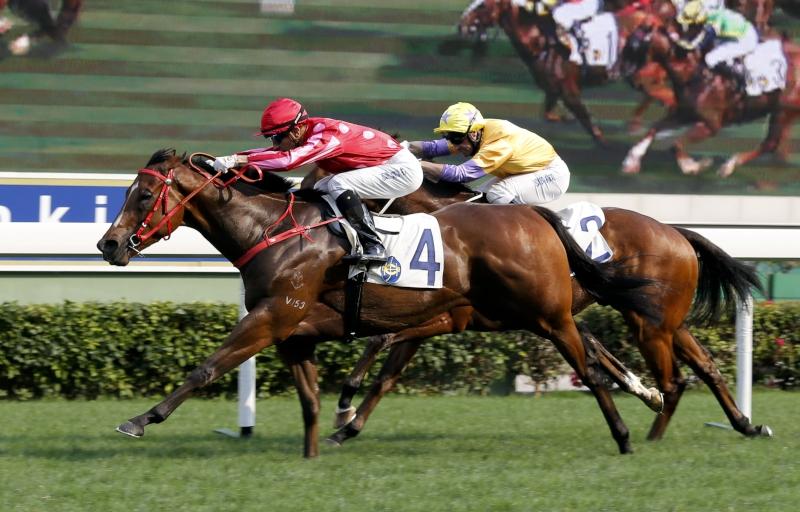 由蔡約翰訓練、莫雷拉策騎的「紅衣醒神」(4 號馬),勝出今日於沙田馬場舉行的二級賽短途錦標(1200米)。