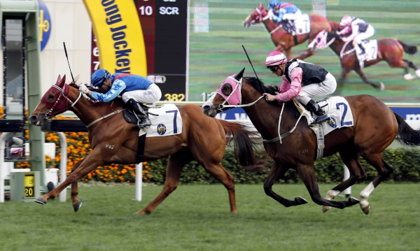 二級賽主席錦標今日於沙田馬場舉行,由約翰摩亞訓練的「佳龍駒」(7 號馬),於莫雷拉胯下勝出此項途程1600米的賽事。