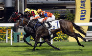 Best Step (outside) finishes a creditable second behind Mr Right at Happy Valley last start.
