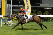 Best Step opens his Hong Kong account over 1000m at Happy Valley last start.