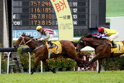 Romantic Touch (No 2) with Zac Purton in the saddle grabs this year��s Macau Hong Kong Trophy at Taipa Racecourse today.