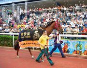 Able Friend parades for the last time at Sha Tin Racecourse in front of his faithful fans.