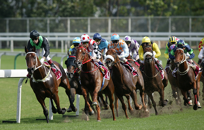 Vanderlin (blue/orange diamonds) ran fifth to Bullish Luck in the 2006 Champions Mile.
