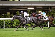 Umberto Rispoli continued his good form aboard Rickfield in tonight��s Cricket Club Valley Stakes Handicap.