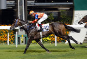 Best Step lands back-to-back victories over 1200m at Happy Valley last start.