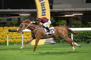 Time Warp sets a new 1800m course record with an easy win in the Class 2 Wyndham Handicap for Tony Cruz and Alvin Ng.