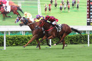 Po Ching Treasure (inside) gets the better of Infinity Endeavour to open his Hong Kong account last start.