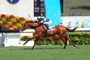 Joao Moreira guides My Darling to an impressive victory in a Class 2 1400m race last start.