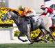 Leung eager for Spark in Queen's Silver Jubilee Cup