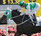 Time Warp gets the Cruz vote ahead of Citi Hong Kong Gold Cup