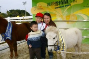 圖二及圖三:嘉年華除了提供平台作藝術交流,一家大小更可暢遊彭福公園,並有機會親親雪特蘭小馬及乘坐馬車拍照。