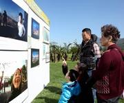 園內展出多項傷健人士的藝術創作,包括剛於今屆國際展能節獲得室內創意攝影及創意繪畫比賽金獎的本地聽障藝術家李業福和高楠的多項作品。