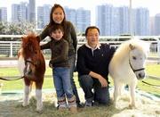 一家大小把握機會與可愛的雪特蘭小馬合照。