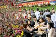 為迎接「人日」及「元宵節」的來臨,啤酒園會?放大量桃花,馬場搖身一變為桃花林,成為情侶伴侶的拍照熱點,馬迷前來跑馬地馬場更可行個桃花大運。